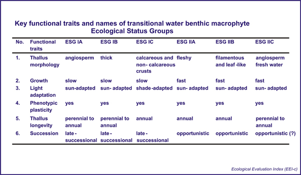 Key functional traits and names of coastal water benthic macropthyte Ecological Status Groups